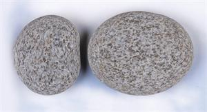 New Zealand Dragon Eggs