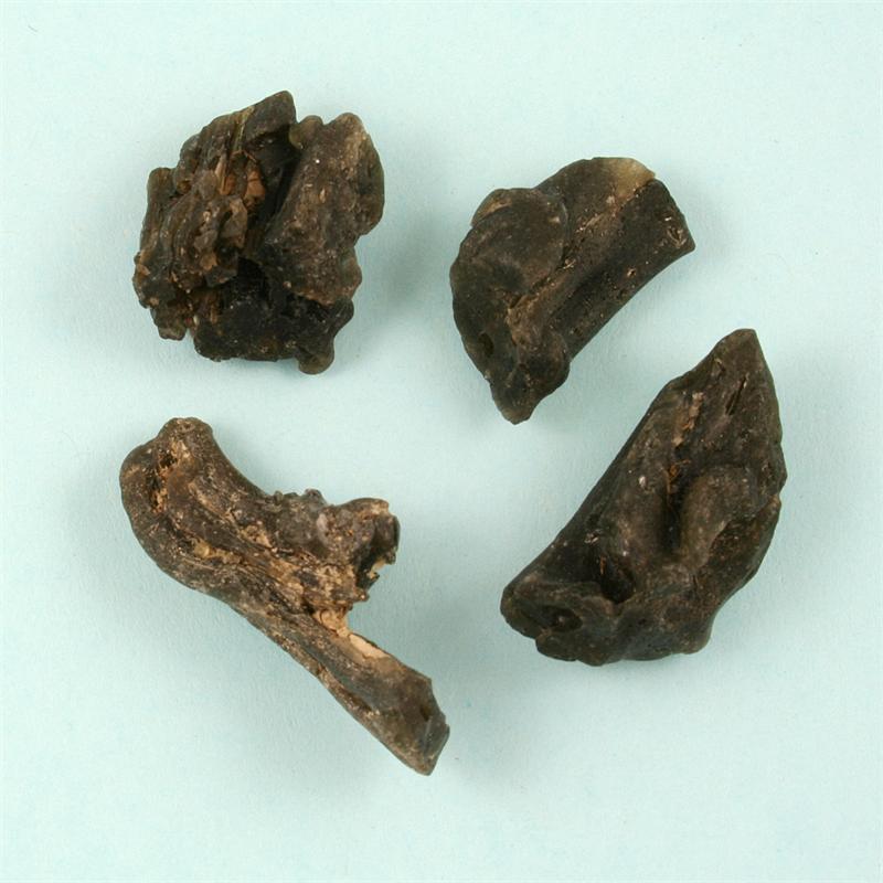 Darwinite (Australian Tektite) Natural Raw Specimens